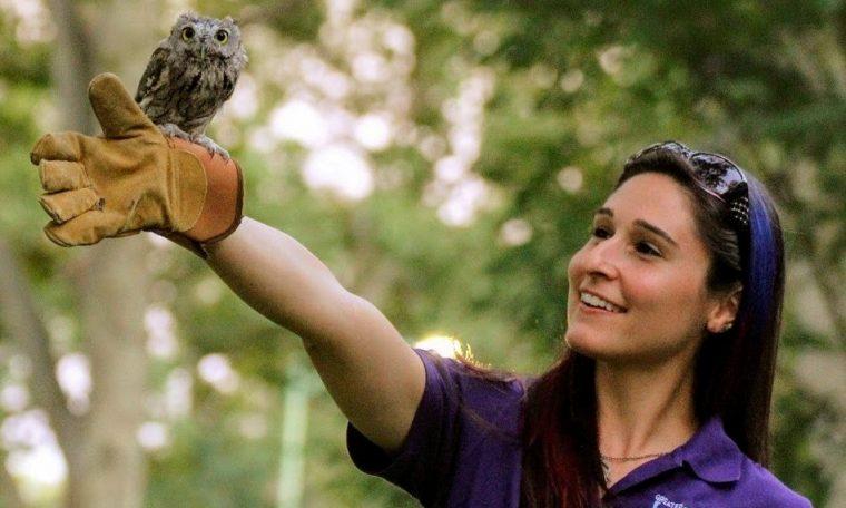 AAZK Owl Release