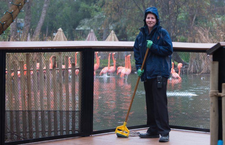 Zoo Staff