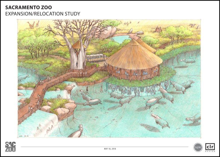 Hippo Exhibit Rendering for relocation