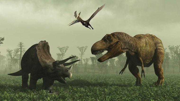 Dinos After Dark banner