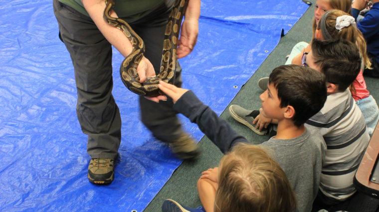 Docent shows class Animal Ambassador on ZooMobile program