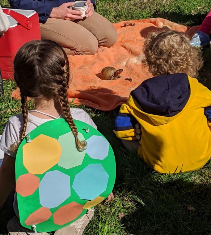 little peeps students meet a turtle